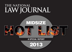 NLJ 2013 Midsize Hot List
